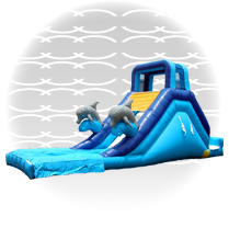 Slide, Dolphin water